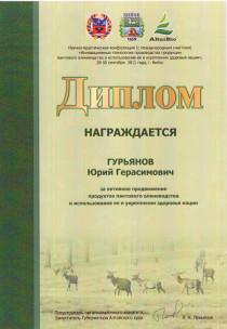 Бийск, 2011, диплом